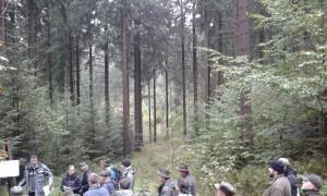 LS Eibenstock - přechod k lesu trvale plně tvořivému (1)
