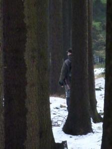 Mezi stromy.